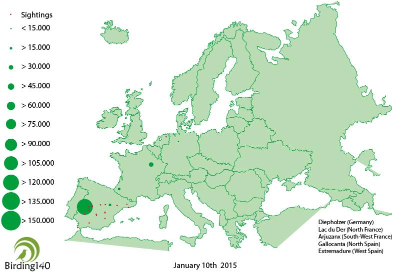 Avistamientos grulla común Europa