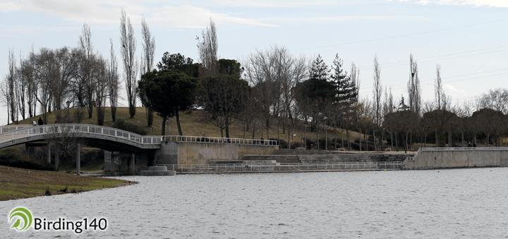 Laguna de Mari Pascuala, Leganés, Madrid