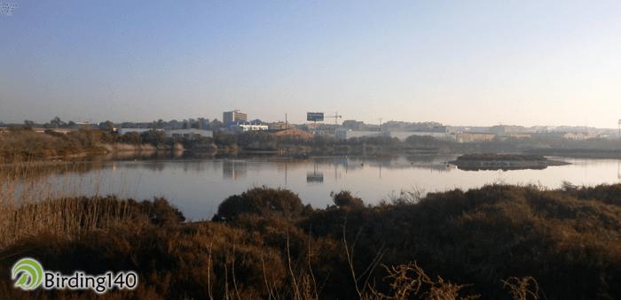 Laguna de Santa Pola