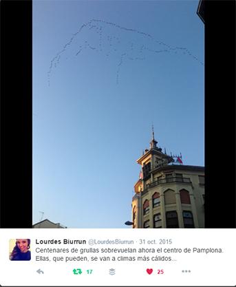 Grullas sobre Pamplona