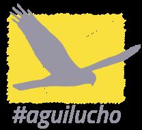 Aguilucho 2016