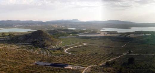ZEPA Sierra de Escalona y Dehesa de Campoamor. ASE.