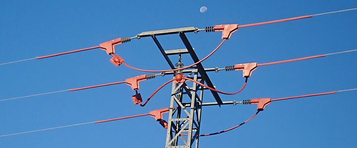 por que no se electrocutan los pajaros en Valdepielagos